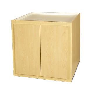 B2431-21 Base Cabinet